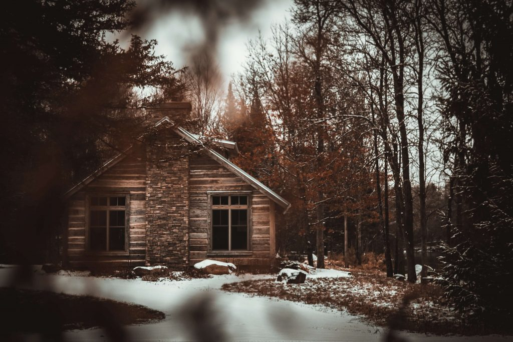 log cabin peeking through branches in the snowy woods